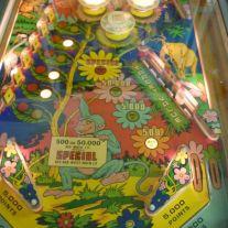 Wood's Queen Pinball Machine